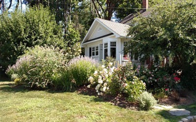 Texas Landscaping Tips That Won't Hurt Your Home