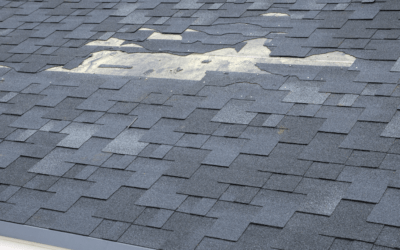 5 Common Signs of Roof Damage: A Guide for Homeowners